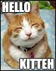 Nenn: Hello