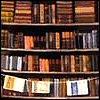 Denise Raymond: bookshop - by sageness