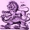 Lion & Dragon