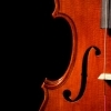 macey muse: violin ~ music-<3