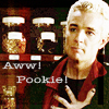 spike: pookie