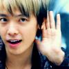 hakkais_shadow: donghae