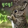 Yay Bunny