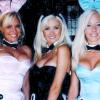 girls next door bunny