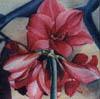 amaryllis_fleur userpic