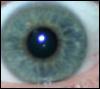 omnibee userpic