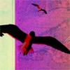 tvzombie userpic
