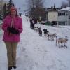 Iditarod 2008
