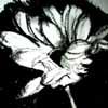 skyeisle userpic