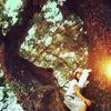 chocobomb: trees