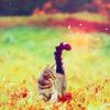 eternally_hers userpic