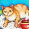 cat-coffee