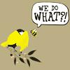 H: Misc - birds & bees