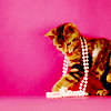 [OT]cat.neckless