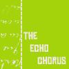 The Echo Chorus: A Multi-Fandom Drabble Community