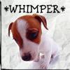 Anissa Roy: Whimper