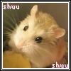 shuushuu