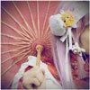 sakiko_angel userpic