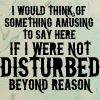 Disturbed Beyond Reason