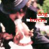 =P i y o k O=: dog lovers mai
