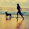 Girl and Dog on Beach