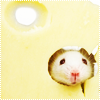 Mouse!, Cheesy!