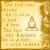 Fool.