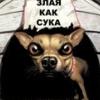bel_bestiya userpic