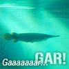 Gaaaar