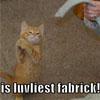 Lol fabric