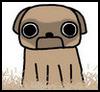 Shedding pug