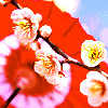 luhnaynay userpic