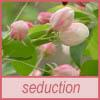 spring, seduction