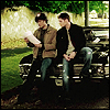 boys on car