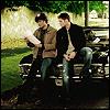 mlebayre: boys on car