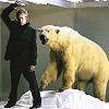 OMGWTF polar bear