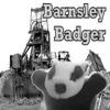 Stegzonopolis Gnomicpantalon: Barnsley Badger