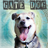 casett: Dusty Gate Dog