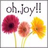 ColtDancer: Oh Joy!