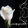 suryla userpic