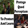 MASHFanficChick: Protego Quod Perceptum (To Protect And L