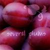 Pen: plums number one