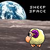 Sheep Space