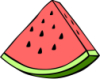 melon_patch userpic