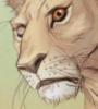 lion, pride of baghdad, fic