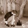 Hesitation - Shoe Fix