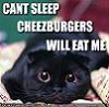 kitteh-cantsleep