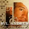 bvl_andrew