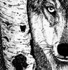 negolith2: Shep whistful