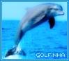 golfinha userpic